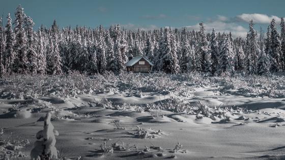 PirraSmith - Tu calor en el invierno - cabaña en medio de bosque nevado