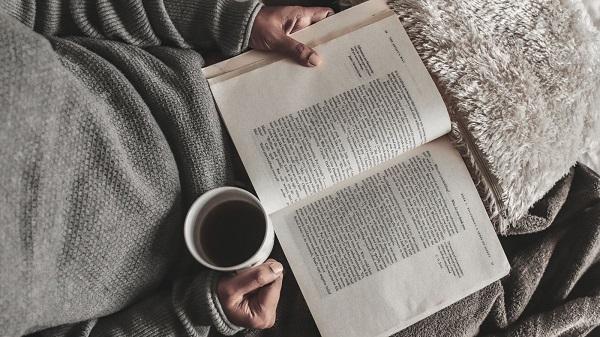 Servicios literarios
